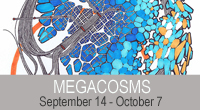MEGACOSM by Stephen Seguin